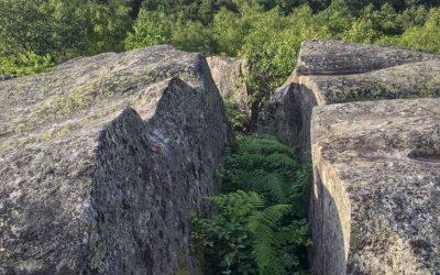 Les Vagues de Fontainebleau