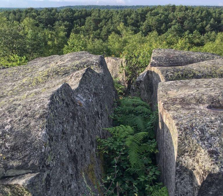fontainebleau géologie private tour guide guide privé visite privée