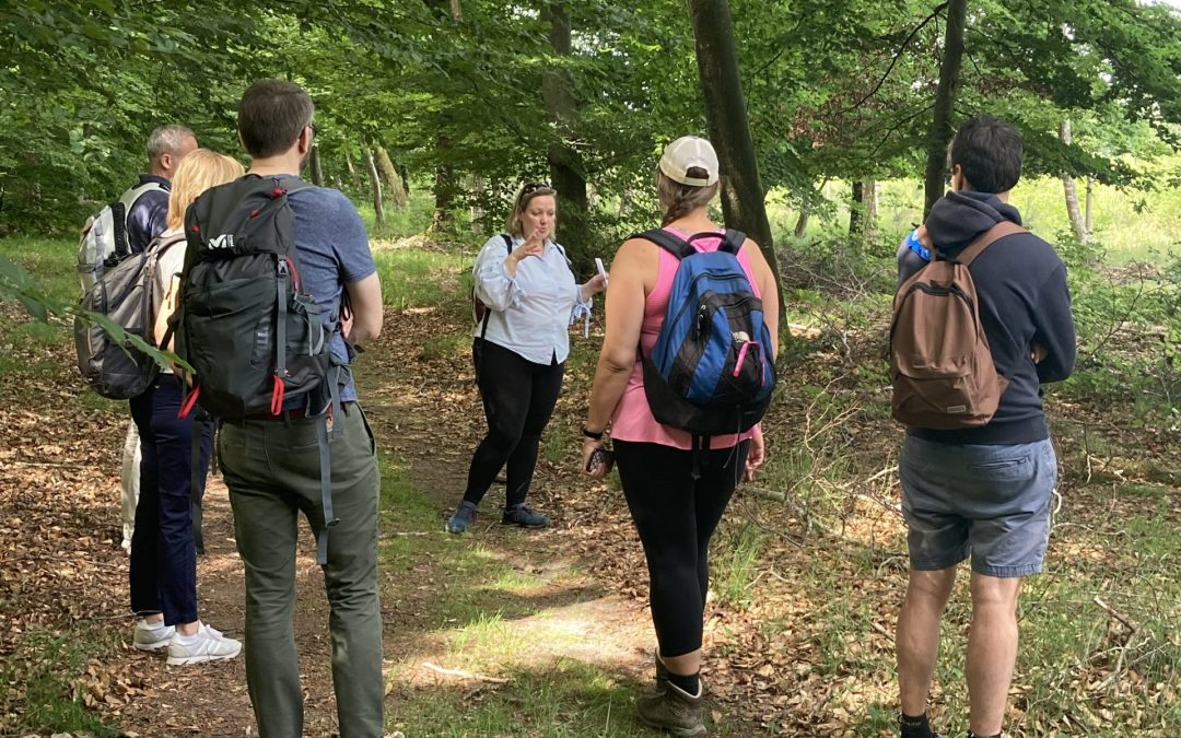visite guidée privée private tour guide fontainebleau foret forest